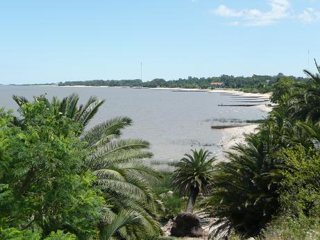 colonia-playa